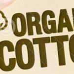 Algodão orgânico – uma oportunidade de marketing (Video)